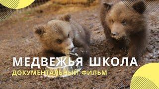 "Фильм ""Медвежья школа"""