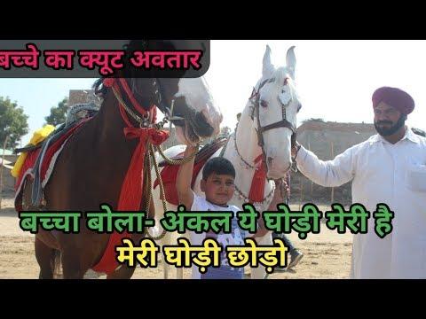 Hanumangarhhorsemarket2019-देख लो कैसे बच्चा अपनी घोड़ी छोड़ने की बात कर रहा है