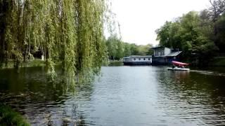 Киев Нивки парк 30 4 17г12(, 2017-05-08T14:46:12.000Z)