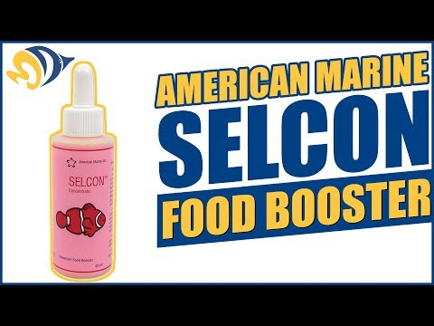 American Marine Selcon Food Booster: What YOU Need to Know