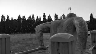 Parole -Hayce Lemsi & Volts Face  Freestyle Lumière Shot by Score16