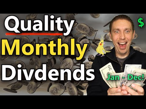 Building A Quality Monthly Dividend Income Portfolio From Scratch! (Dividend Income Investing)