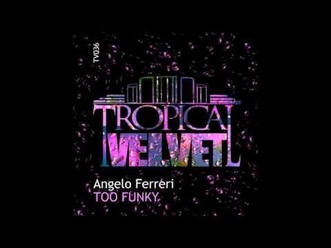 Angelo Ferreri - Too Funky (Original Mix)