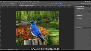 Removendo fundo dificil sem plugin com Photoshop CS6 - AULA 03