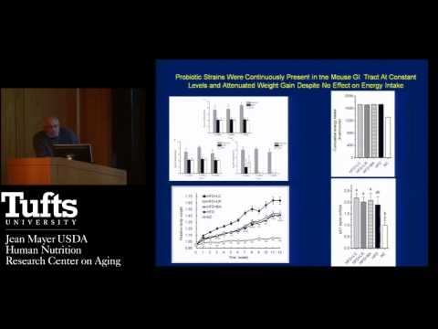 M.Obin: Differential effects of probiotic strains on gut microbiota...