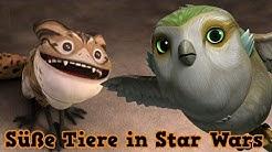 Die 6 süßesten Tierarten - Star Wars [Deutsch]