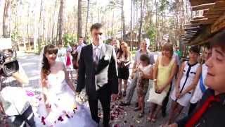 Свадебный клип -  Дмитрий и Кристина