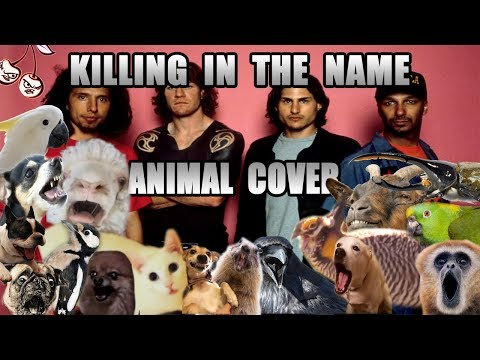 Rage Against The Machine - Killing In The Name (Animal Cover)