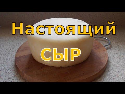 Сыр в домашних условиях из козьего молока простой рецепт