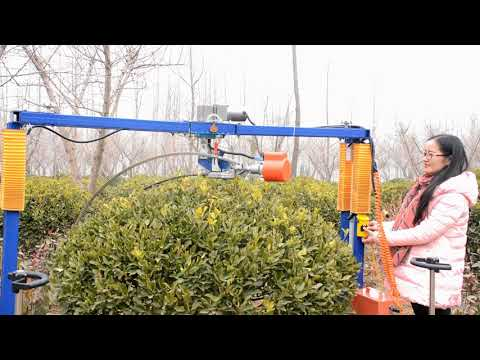 Automatic Trimming Machine For Round Shrubs