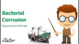 √ Bacterial Corrosion of Shipwrecks - Anaerobic Bacteria - Shipwreck and Salvage | iitutor