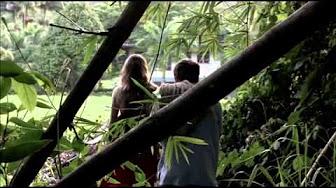 Zabójcze zlecenie (2008)