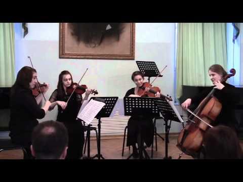 "Johann Strauss ""Blue Danube"" Waltz"