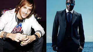 Akon feat. David Guetta Party Animal ( DJ-Bass2K Remix )