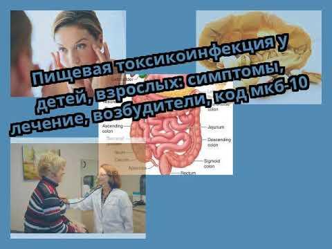 Пищевая токсикоинфекция у детей, взрослых: симптомы, лечение, возбудители, код мкб-10
