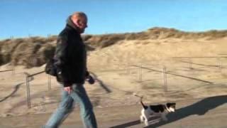 Julianadorp aan Zee wandeling.wmv