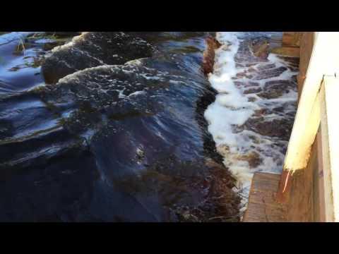 Deep River Fernhook Falls Mount Frankland National Park Western Australia