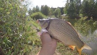 Рыбалка в Туймазах. Провожаем лето 2017. Пруд в Юзеево