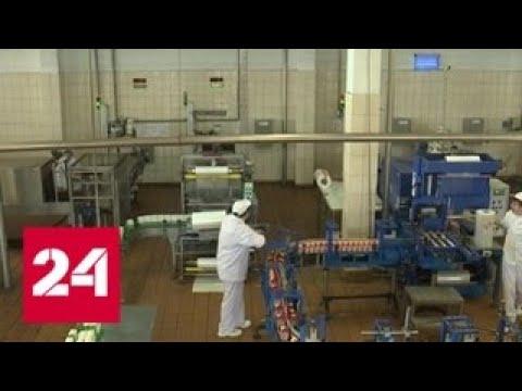 Российской молочной продукции поменяют упаковку - Россия 24