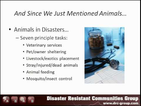 Human Services Coordination In Disaster - Workshop
