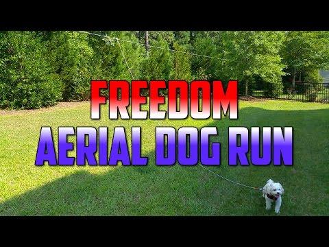 Freedom Aerial Dog