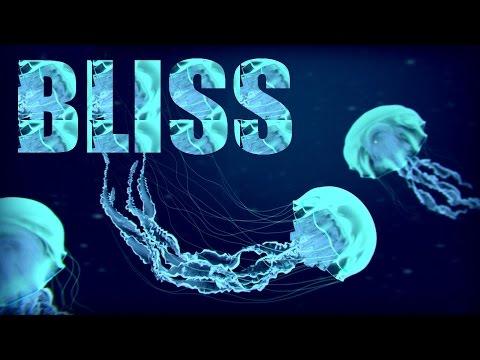 BLISS (Deep/Underground Tech House Mix)