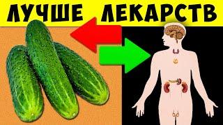 постер к видео Вот почему Огурцы нужно есть Каждый день! Но Важно знать кому Опасно...