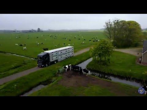 Hunland - A kamionos Oroszországban 2019 -Előzetes