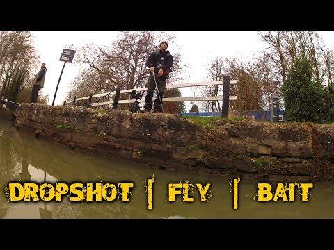 SCAVENGING for BAIT, DROPSHOT Fishing & FLY FISHING Tips