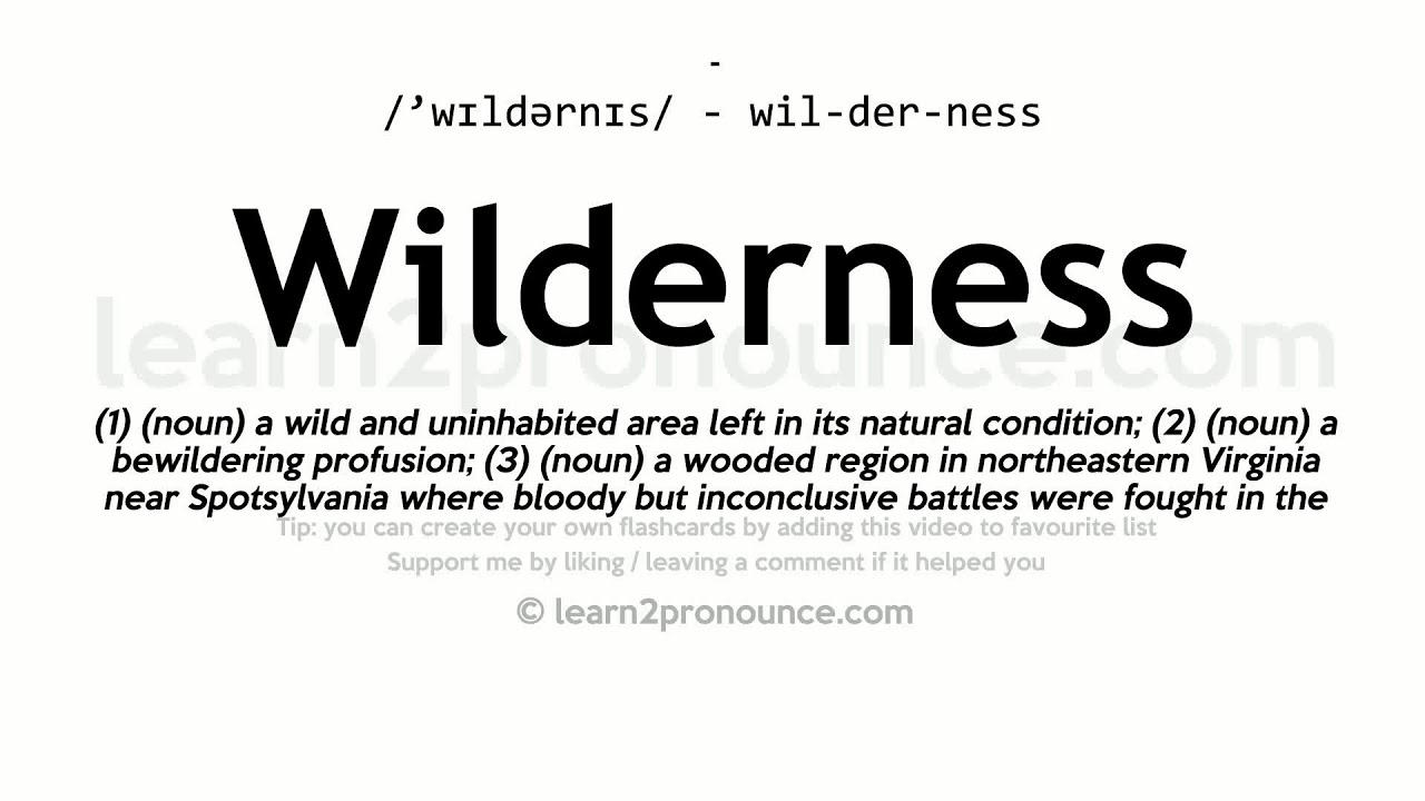 Wilderness pronunciation and definition