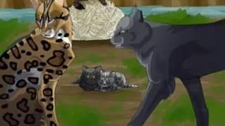 Коты Воители: Пятнистая Звезда