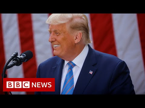 """Trump describes allegations he avoided taxes as """"fake news"""" - BBC News"""
