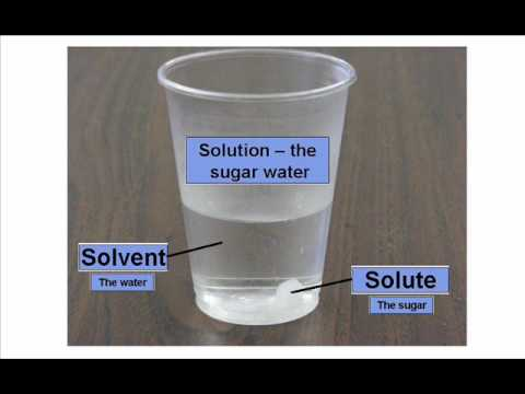 Solute And Solvent   Dissolving