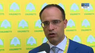 Coldiretti, difesa del Made in Italy: ecco come. Di Maio: si ai voucher in Agricoltura
