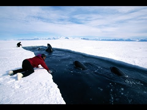 Discovery Science Documentary 2016: NOVA Antarctica  Secrets Beneath the Ice (TV Episode full)