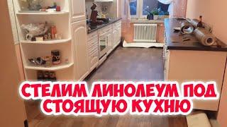 видео Как выбрать линолеум для кухни правильно?