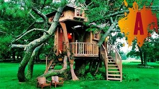 10 most amazing treehouses in the world