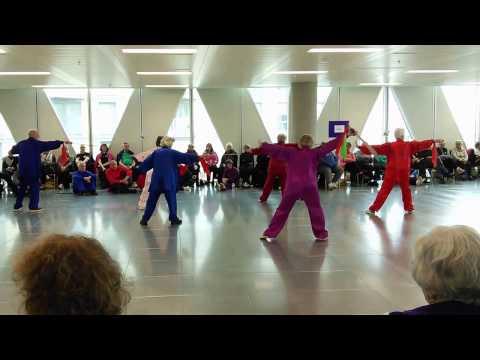 Sabre Form - World Tai Chi and Qigong Day 2017