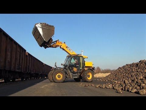 JCB 541-70 Loading Sugar Beet | MTZ,JD,CASE,CLAAS | Cukorrépa szállítás - rakodás *Music*