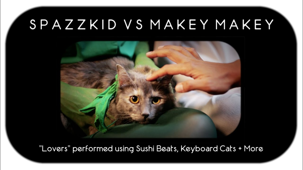 Objects Hacked To Make Music Sushi Cats More Youtube