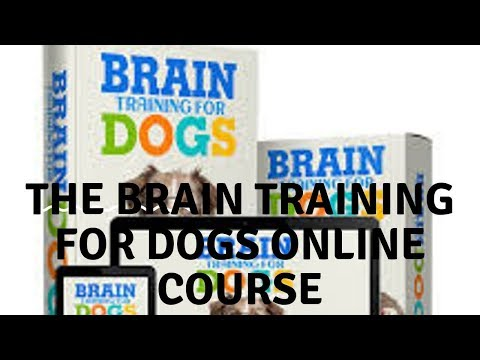7-module-online-courses-about-dog-training