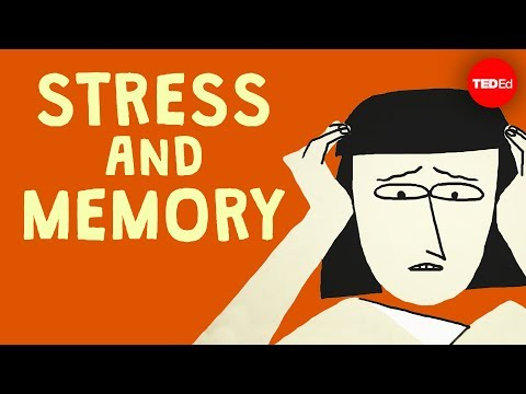 Video image: The surprising link between stress and memory - Elizabeth Cox