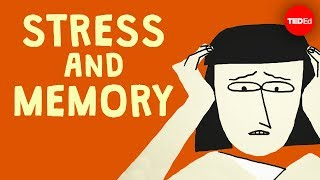 The surprising link between stress and memory - Elizabeth Cox