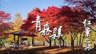 日本東北紅葉の旅 #04 ~ 青森