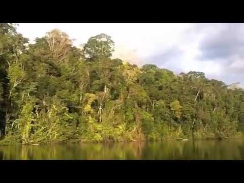 ICMBio - Flona do Amapá, Plano Ecoturismo Base Comunitária, 2011