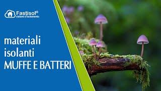 Materiali isolanti, muffe, funghi e batteri