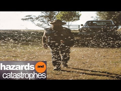 Return of the Bible Plagues Part 4: Locusts | Full Documentary
