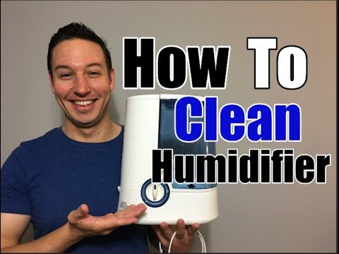 How To Clean a Humidifier | Clean With Confidence