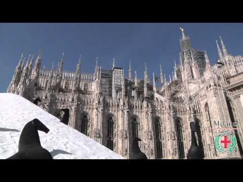 Paladino: Milano, La Città che Sale
