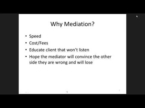 Mediation; Mega Case and Avoidance Actions